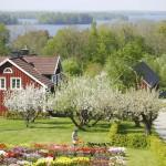 Молитвенная группа в провинции Смоланд (Швеция): ее рождение и развитие