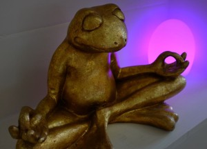 Медитирующая лягушка. Судьба медитации.