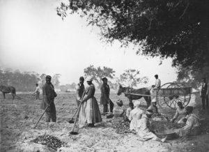 Грехи моих предков: рабство