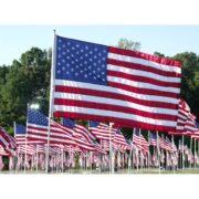 Безнравственность патриотизма
